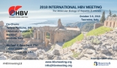 "A TAORMINA IL PRESTIGIOSO ""INTERNATIONAL HBV MEETING"" DAL 3 AL 6 OTTOBRE"